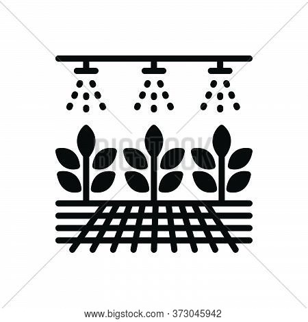 Black Solid Icon For Hydroponic Organic Plant Husbandry Farming Gardening Plantation