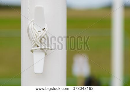 White Pin Peg For Rolling Up Strings. Party Event Tent Details Concept.