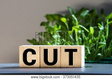 Fed, Federal Reserve With Interest Rate Cut Concept, Small Cube Block With Alphabet Building The Wor