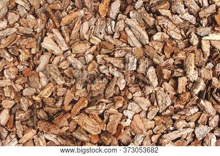 Full Frame Background Made Of Natural Untreated Tree Bark Pieces - Wood Chip Mulch For Gardening Or