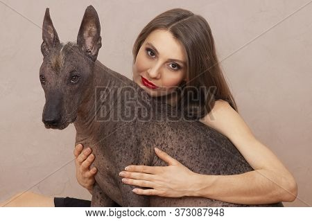 Young Attractive Woman Embracing Mexican Hairless Dog, Or Xoloitzcuintle Breed. Female With Dark Hai