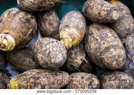 Isolated Fresh Harvested  Satoimo Potatoes. Taro Root. A Plant That Utilizes The Root.