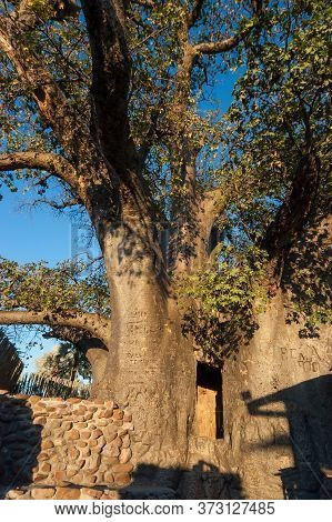 Outapi, Namibia - May 20, 2011: A Door Is Visible In The Hollow 800 Year Old Ombalantu Baobab Tree A