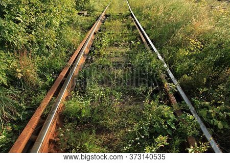 The Old Railway. Abandoned Rusty And Active Railway Track Overgrown With Grass. Rails In The Light O