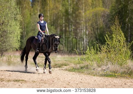 Beautiful Girl Riding A Horse On Manege At Summer