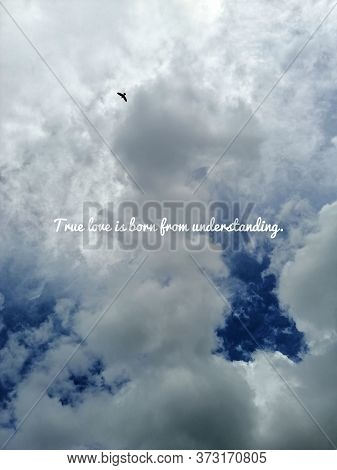 True Love Is Born From Understanding. Buddha Quote On Dramatic Blue Sky Background