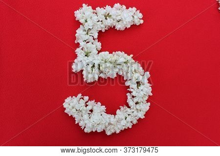 The Number 5 Is Written In White Lilac Flowers On A Red Background. The Number Five Is Written In Fr
