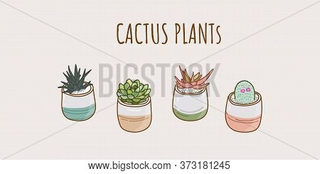 Colorful Cactus Plants Collection Vector Element. Hand Drawn Cactus For Design.