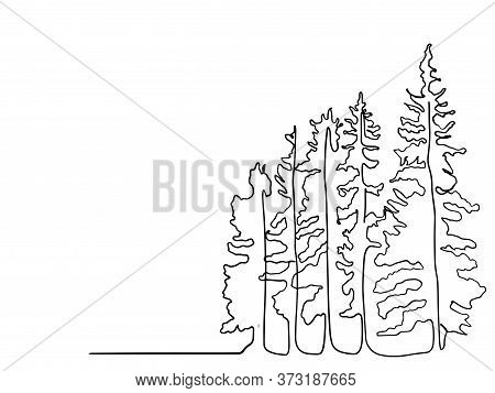 Pine Tree Continuous Line Drawing Art. Simple Forest, One Line Drawing Of Nature Tree Vector Illustr