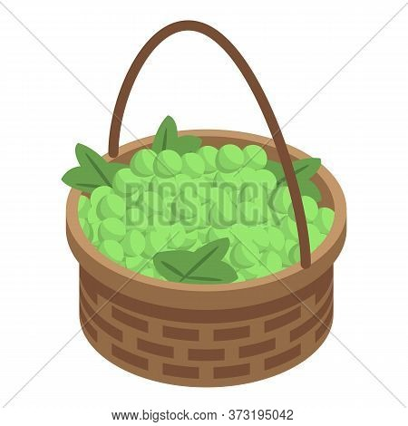 Green Grapes Basket Icon. Isometric Of Green Grapes Basket Vector Icon For Web Design Isolated On Wh