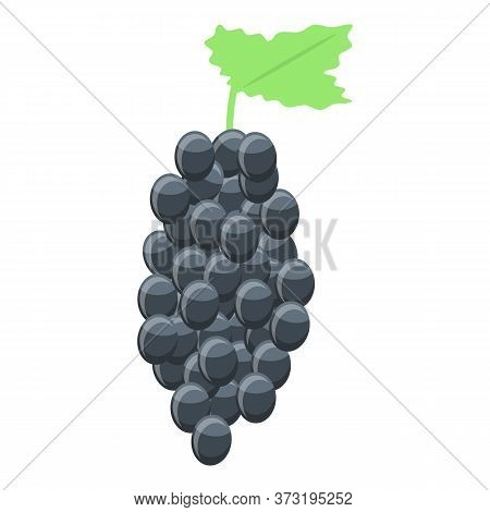 Black Wine Grapes Icon. Isometric Of Black Wine Grapes Vector Icon For Web Design Isolated On White