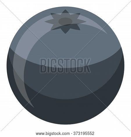 Confectioner Blackberry Icon. Isometric Of Confectioner Blackberry Vector Icon For Web Design Isolat