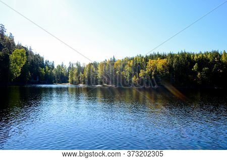 Forest Landscape Of A Lake With Blue, Calm Water On A Clear, Sunny Day. Blue Sky, Sun Rays And Glare