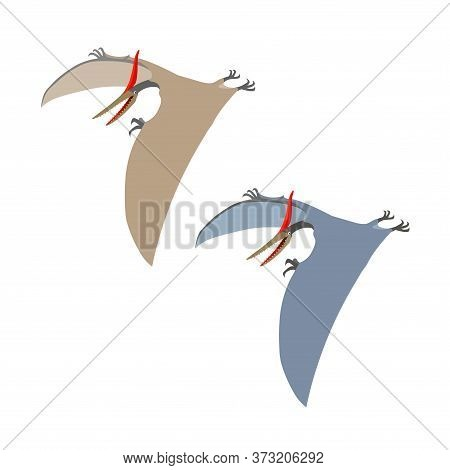 Prehistoric Reptile Of The Jurassic Period, Flying Grey Pterodactyl With Wings And A Crest, Color Ve