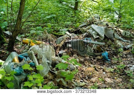 Garbage Dump In The Forest Illegal Dumping Of Garbage Violates The Ecology Of The World