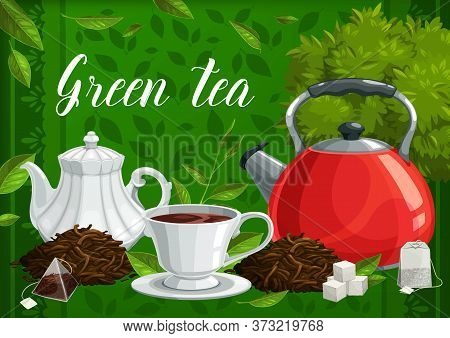 Green And Herbal Tea, Vector Hot Beverage. Cup With Saucer, Fresh And Cured Leaves, Porcelain Teapot