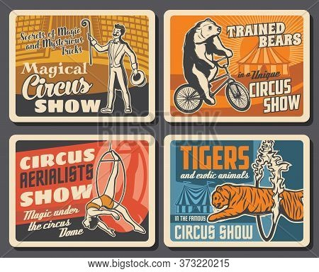 Circus Performers, Animals, Chapiteau Carnival Top Tent Vector Retro Posters Of Circus Show. Magicia