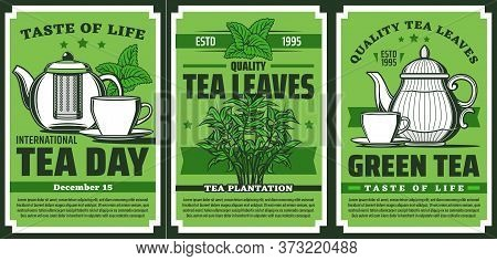 Green Tea Leaves, Hot Drink Cup And Pot, Vector Retro Poster And Package Design. Handpicked Premium