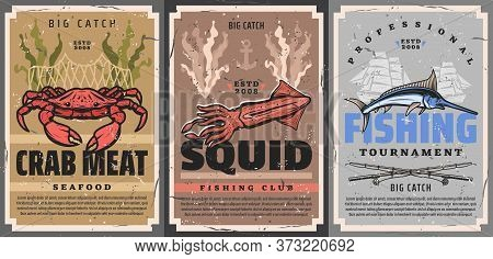 Fishing Sport For Crab, Squid And Marlin Fish, Big Catch Tournament Vector Retro Vintage Posters. Pr
