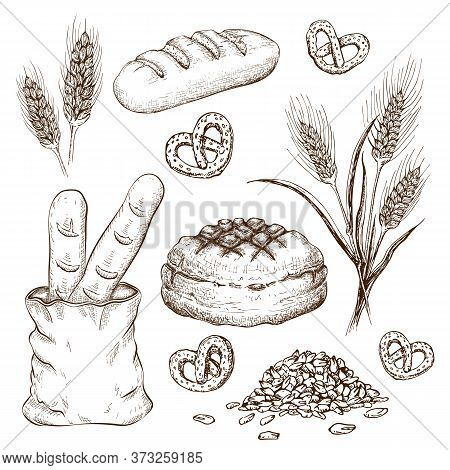 Hand Drawn Breads Set Isolated On White. Vintage Illustration Of Variety Bread Like French Baguette,