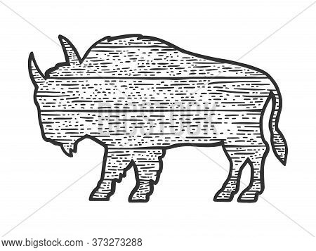 Wooden Buffalo Bison Animal Silhouette Sketch Engraving Vector Illustration. T-shirt Apparel Print D