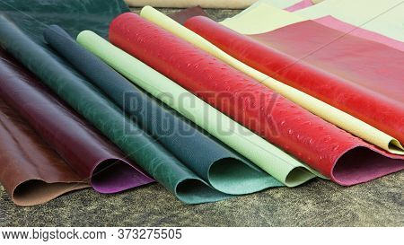 Samples Of Binding And Decoration Materials In Press Plant House