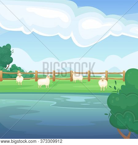 Landscape Of A Green Summer Field With A Lake And Sheeps. Natural Landscape. Agricultural Fields. Ag
