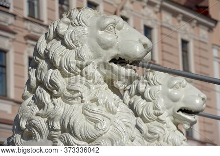 Russia, St. Petersburg 30,03,2019  The Lion Bridge In St. Petersburg. White Iron Lions Of The Bridge