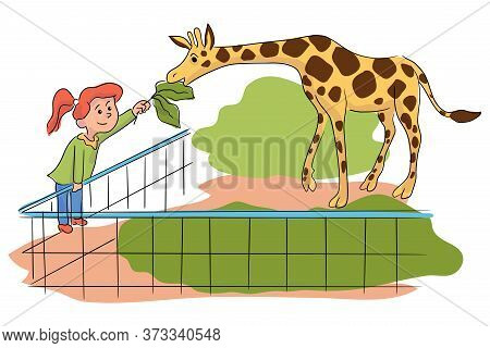 Cartoon Little Girl Feeding Giraffe At Contact Zoo. Happy Kid Female Character Interacting With Anim