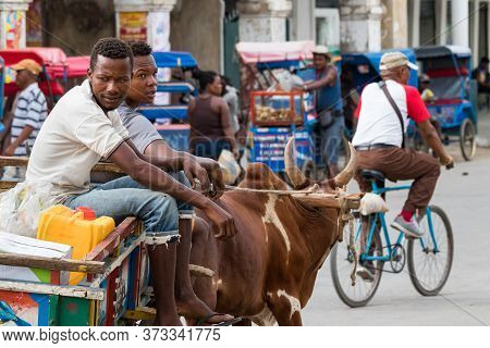 Toliara, Madagascar - January 10th, 2019: Two Malagasy Men On A Wooden Bullock Cart Pulled By Two Ox