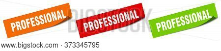 Professional Sticker. Professional Square Isolated Sign. Professional Label