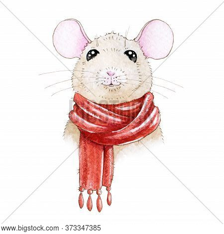 Watercolor Illustration Of A Small Cute Cartoon Mouse In Warm Cozy Christmas Red Scarf. Little Rat (