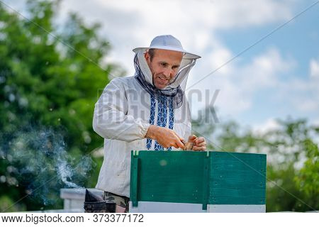 Beekeeper At Apiary At The Summer Day. Man Working In Apiary. Apiculture. Beekeeping Concept.