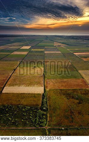 Checkerboard Of Pulwy Meadows In Sunset Light, Poland