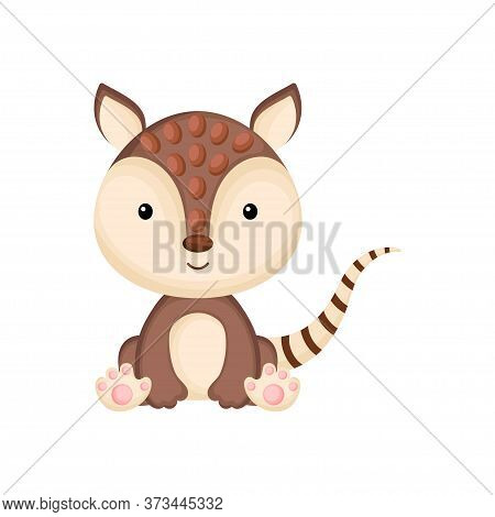 Cute Baby Armadillo Sitting Isolated On White Background. Adorable Animal Character For Design Of Al