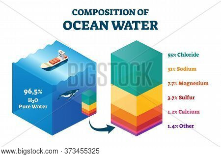 Composition Of Ocean Water Vector Illustration. Labeled Structural Educational Scheme With Cross Sec