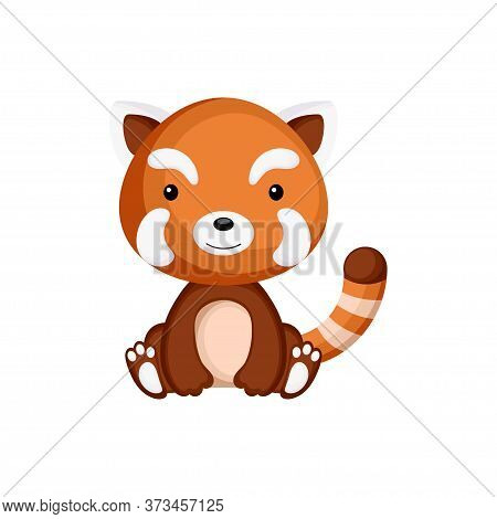 Cute Baby Red Panda Sitting Isolated On White Background. Adorable Animal Character For Design Of Al