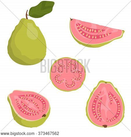 Whole And Sliced Guava. Tropical Fruit In Cartoon Style.