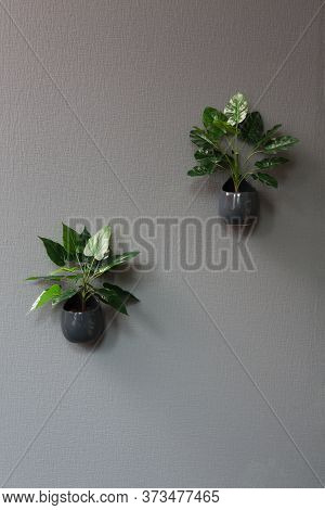 Two Pots With Faux Plastic Flower On Grey Office Or Home Wall. Modern Interior In Grey Tones. House