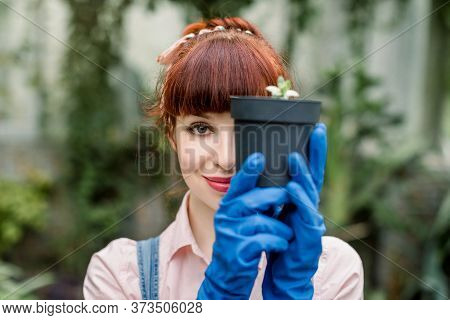 Close Up Beauty Portrait Of Gardener Woman In Jeans Overalls And Blue Gloves Holding Plant In Pot Wi