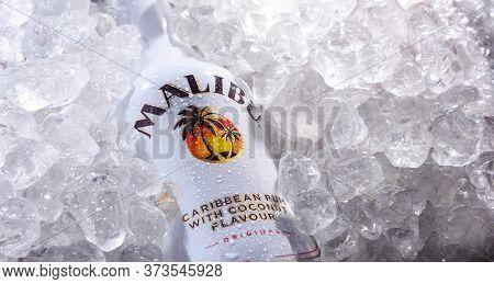Bottle Of Malibu Caribbean Rum In Crushed Ice