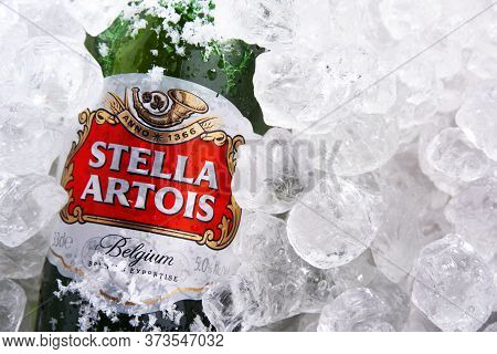 Bottle Of Stella Artois Beer In Crushed Ice