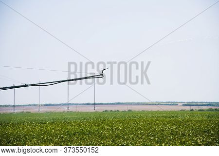 Modern Agricultural Irrigation System Spraying In Field