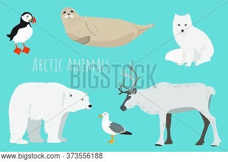 Vector Collection With Arctic Animals On A Blue Background. Illustration With Cute Animals For Child