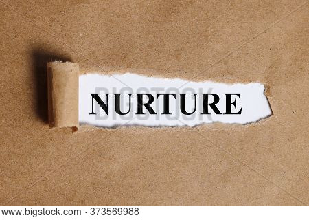 Torn Paper With On A White Background With A Frame For Text. Text Nurture