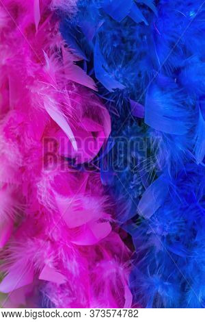 Colorful Pink Blue Feathers Necklaces Purple Blue White New Orleans Louisiana.  Feathers Warned At M