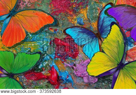 Colors Of Rainbow. Color Concept. Bright Tropical Morpho Butterflies On An Artist\'s Palette. Art Pa