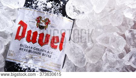 Bottle Of Duvel Beer In Crushed Ice
