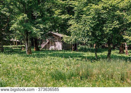 Chalet In Koenigsee, Koenigssee, Berchtesgaden National Park, Bavaria Germany. Chalet In The Park Be