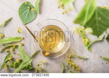 Glass Of Herbal Tea With Linden Flowers. Tea From Linden. Fresh Flowering Linden On A Wooden Backgro